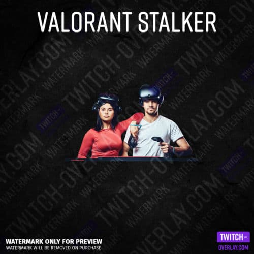 Valorant Webcam Overlay Stalker Edition Greenscreen Webcam Overlay ohne Donation-Bar